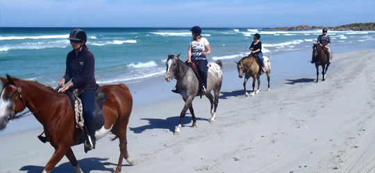 Horse Trail Ride - King Island